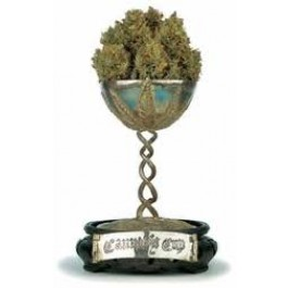 Green House Seeds Flower Bomb Kush On Sale Here