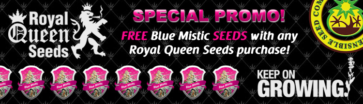 Royal Queen Seeds OG Kush Seeds - Free Blue Mistic Seeds Special Promo!