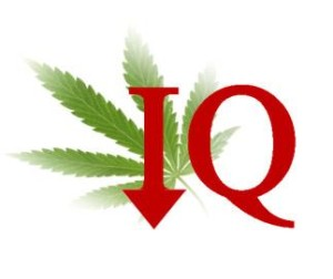 Cannabis Report and IQ