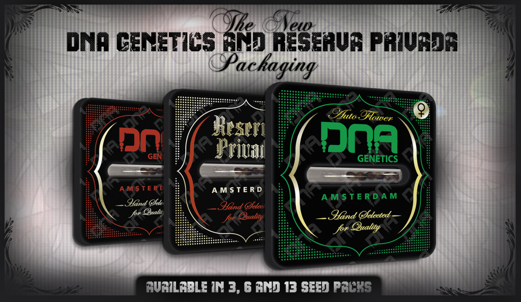 View All DNA Genetics Seeds Here - USA Worldwide Shipping - Free Weed Seeds With Every Order!