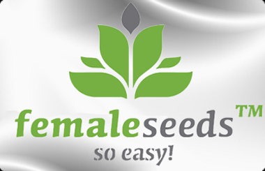View Female Seeds - USA Worldwide Shipping - Free Weed Seeds With Every Order!