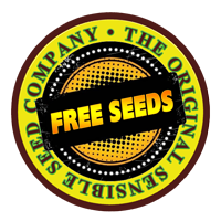 Free Cannabis Seeds - Autoflowering Feminized Reqular  Seeds For Sale