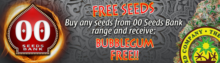 Buy Weed Seeds Online - Free Bubblegum seeds