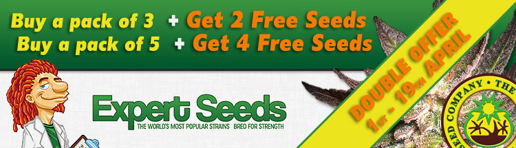 Expert Seeds DOUBLE YOUR SEEDS OFFER!